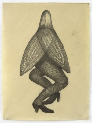 "Sandra Vásquez de la Horra, ""La Mosca (The Fly)"" (2016), graphite and wax on paper, 15 x 11 1/4 inches"